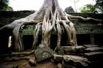 Le site d'Angkor au Cambodge, classé au patrimoine mondial de l'Unesco