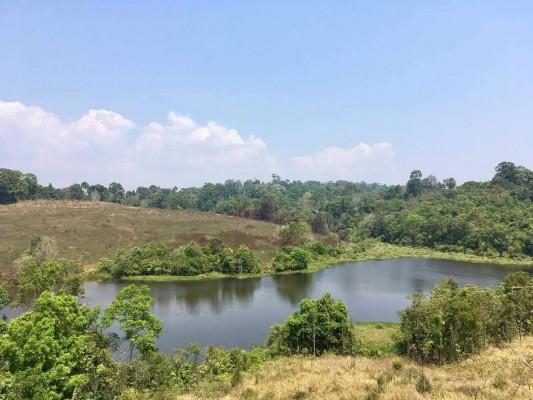 Le Parc Naturel de Khao Yai