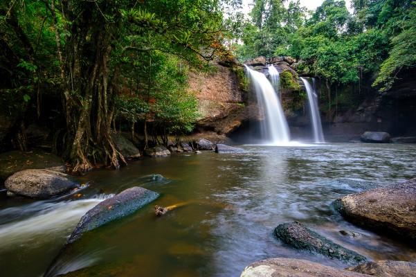 Le parc national de Khao Yai en Thaïlande