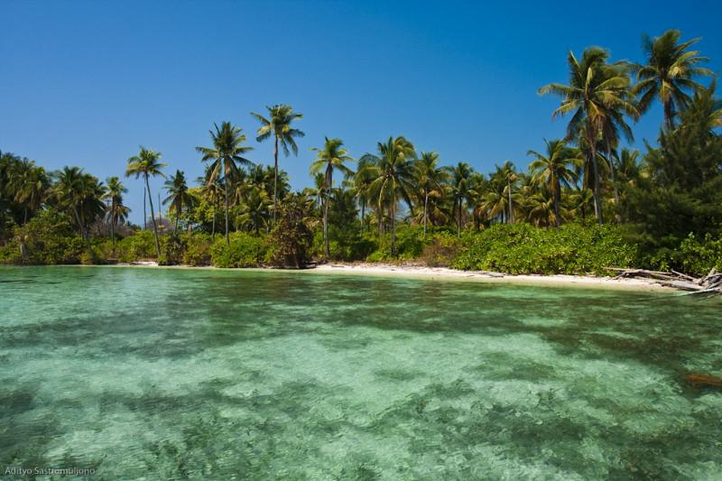 D'autres petites îles de paradis en Indonésie...