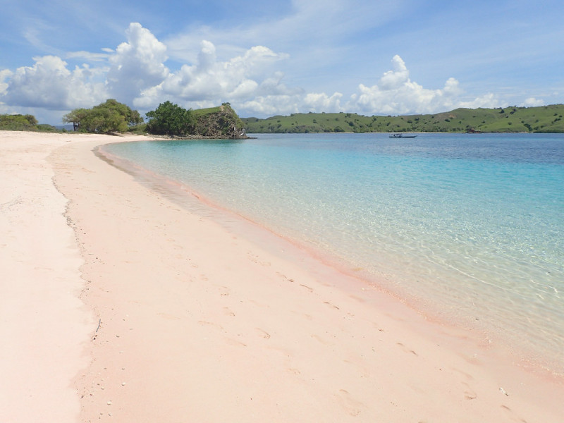 La plage rose de Florès, au large de Komodo en Indonésie