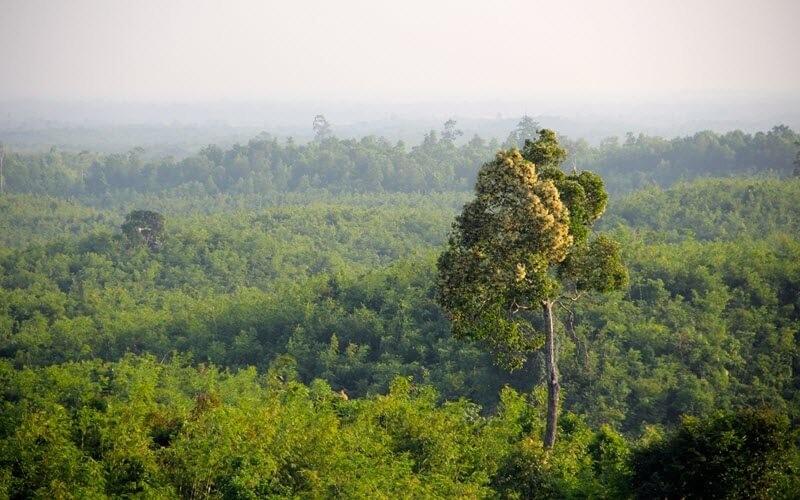 10. Eco-tourisme et Tourisme communautaire