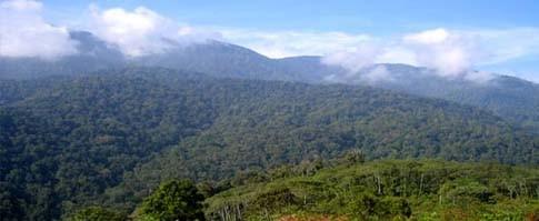 Camper au parc naturel de Gunung Leuser