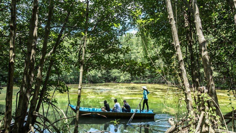 Les plonger en pleine nature dans la mangrove de Can Gio, au coeur du delta du Mékong