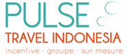 logo pulse travel indonesia