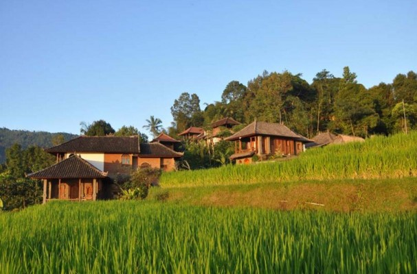 Puri Lumbung Cottages - Munduk