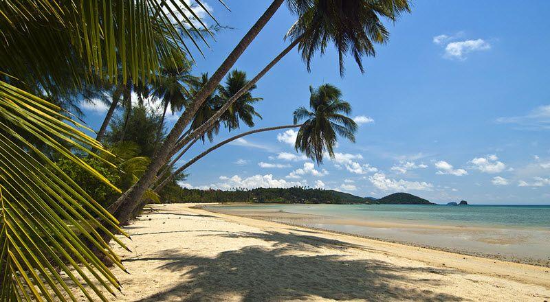 plage de ao suan yai avec cocotier a koh mak