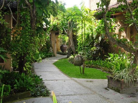 Tourisme Solidaire  U00e0 Bali